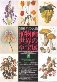 botanical_art