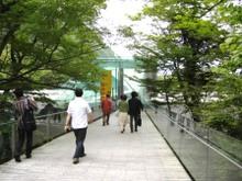 Entrance_pola