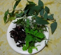 Herb_1
