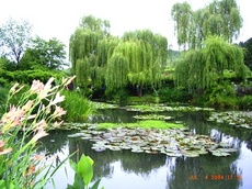 mones_pond