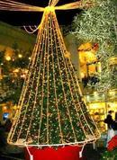 takashimaya_tree
