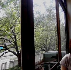 Window4_1